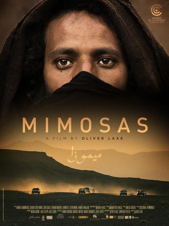 mimosas-188806834-large